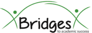 Bridges to Academic Success